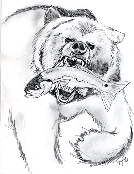 pencil sketch bear